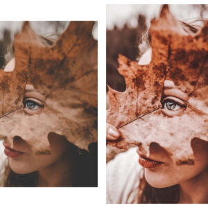 10 Rich and Moody Lightroom Presets 4
