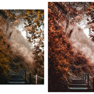 10 Rich and Moody Lightroom Presets 5