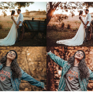 10 Rich and Moody Lightroom Presets 6
