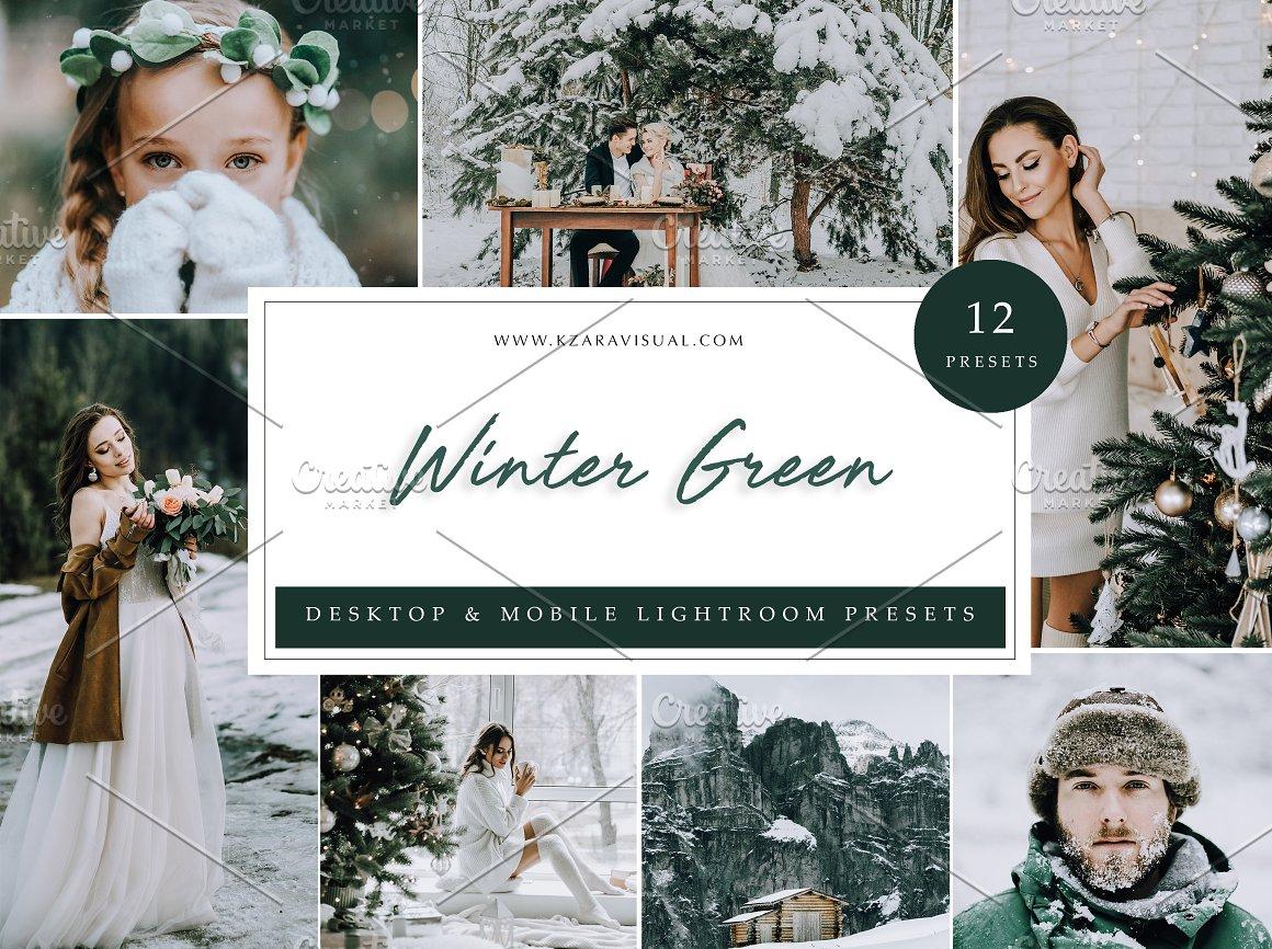 ۱۲ پریست لایت روم مجموعه زمستان سبز