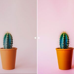 30 Product Photography Lightroom Presets 5