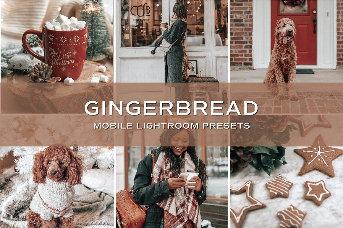 5 Gingerbread Lightroom Presets