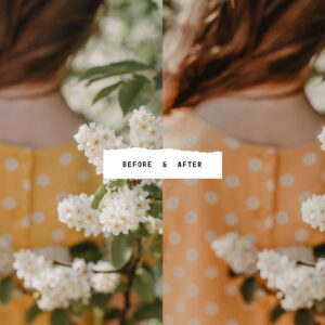 5 Tan Lightroom Presets Bundle2