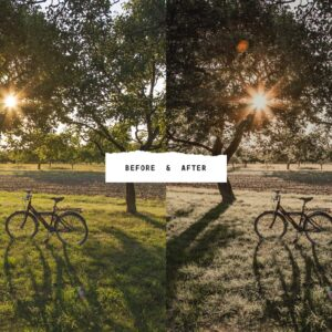 5 Tan Lightroom Presets Bundle7