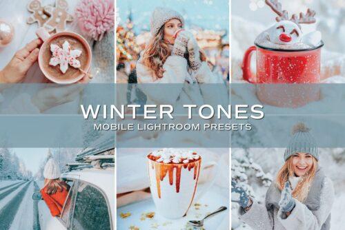 5 Winter Tones Lightroom Presets