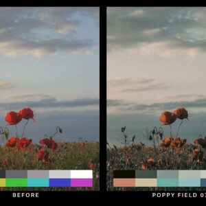 50 Desolated Cinematic Lightroom Presets and LUTs 1