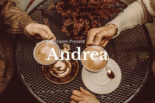 Andrea Lightroom Presets