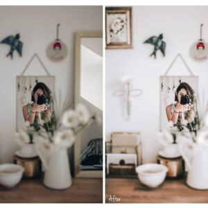 Bright and Airy Indoor Presets 7
