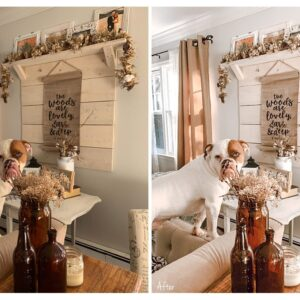 Bright and Airy Indoor Presets 8