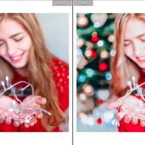 CHRISTMAS TONES MOBILE Lr PRESETS 1