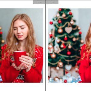 CHRISTMAS TONES MOBILE Lr PRESETS 3