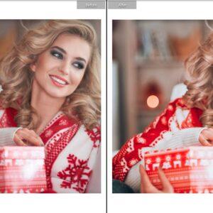 CHRISTMAS TONES MOBILE Lr PRESETS 4