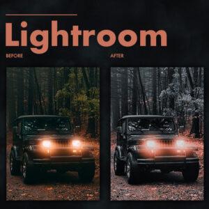 Dark Effect Lightroom Preset 1