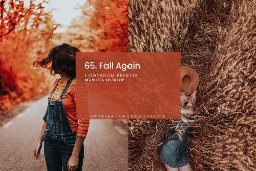 Fall Again Lightroom Presets