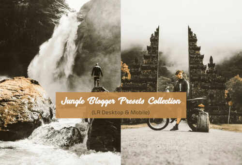Jungle Blogger Presets Collection