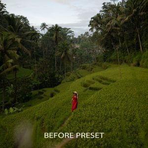 Kyle Vollaers Lightroom Presets The Master Collection 68