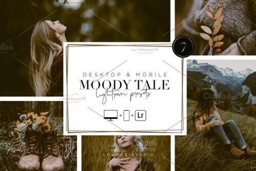 MOODY TALE Lightroom Presets