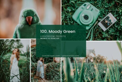 Moody Green Lightroom and Photoshop Preset