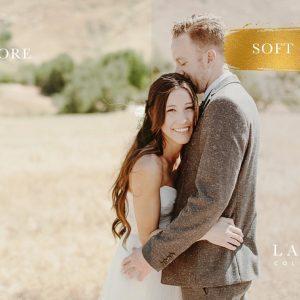 Soft Gold Wedding Presets 4