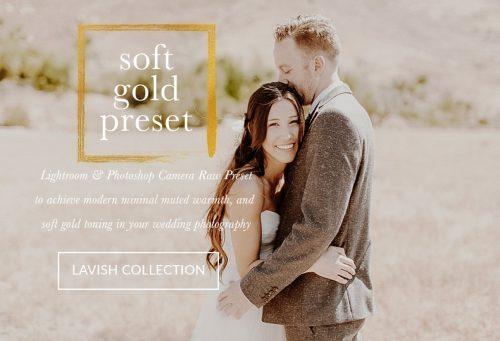 Soft Gold Wedding Presets