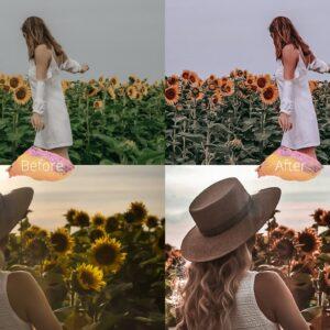پریست های لایت روم موبایل مجموعه گل آفتاب گردان