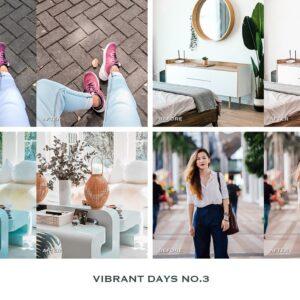 Vibrant Lightroom Presets Mobile 10
