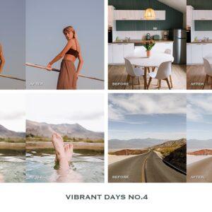 Vibrant Lightroom Presets Mobile 16