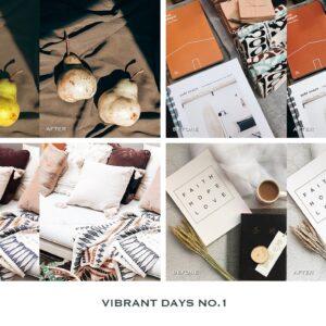 Vibrant Lightroom Presets Mobile 2