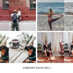 Vibrant Lightroom Presets Mobile 3