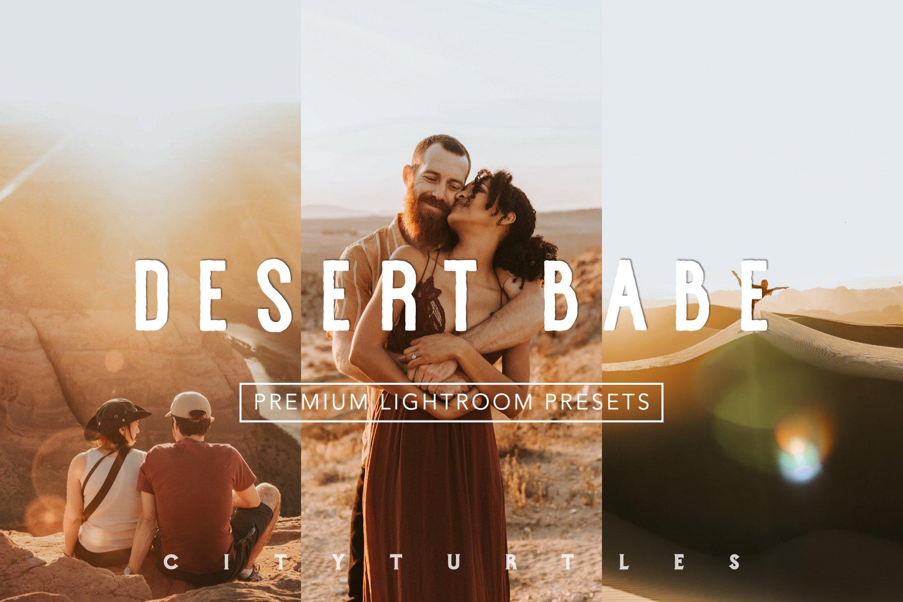 Warm Vibrant DESERT BABE LR Presets