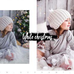 مجموعه پریست زمستان سفید
